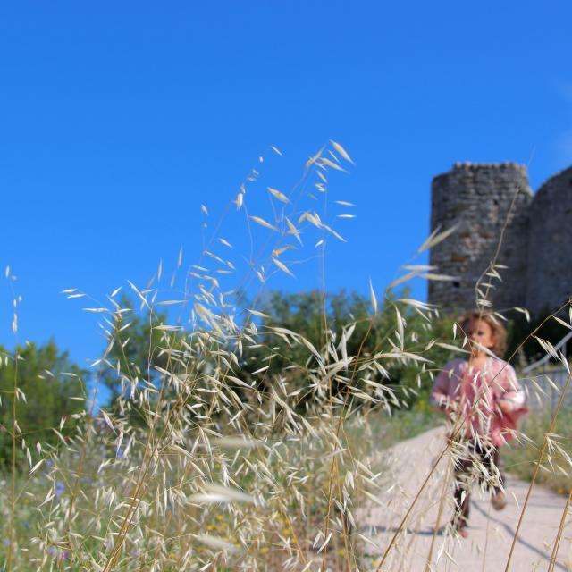 Nature Chateau Peypin Oti Aubagne