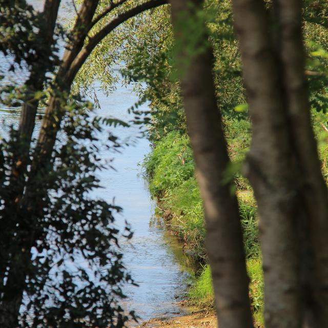 Nature Eau La Penne Sur Huveaune Oti Aubagne