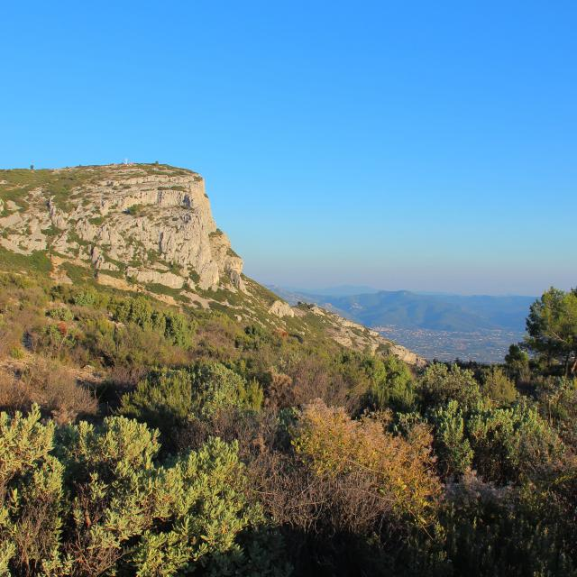 Garrigue Garlaban Sommet Nature Massif De L'etoile Provence Oti Aubagne