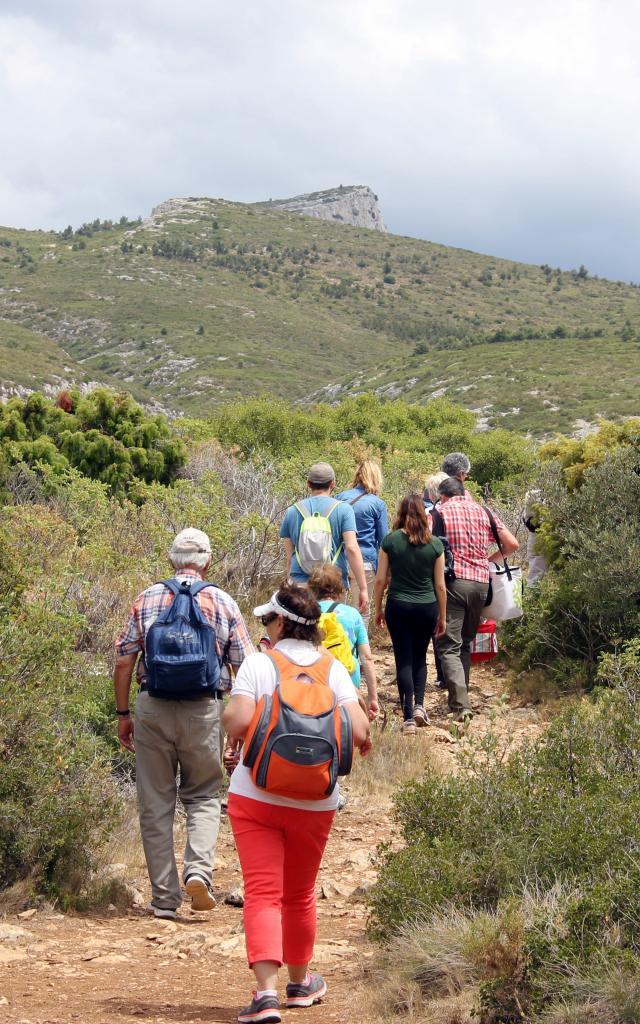 Sentier Nature Randonneur Massif Etoile Randonnee Oti Aubagne