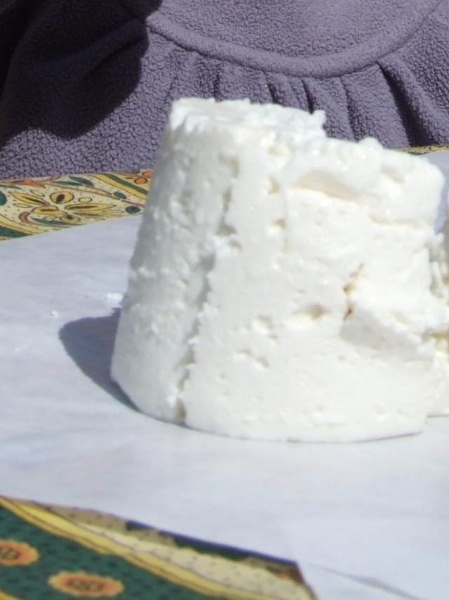 fromage-chevre-rove-cabro-dor-oti-aubagne-scaled.jpg