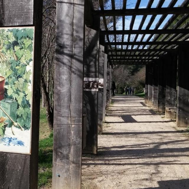 Pergola Sentier D'interpretation Font De Mai Oti Aubagne